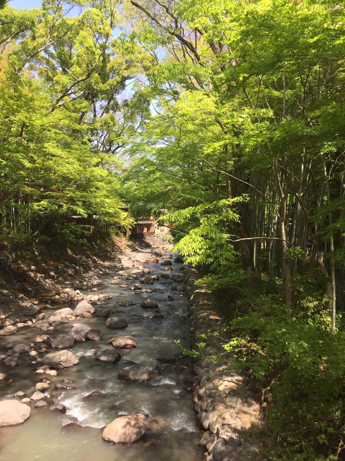 修善寺の川