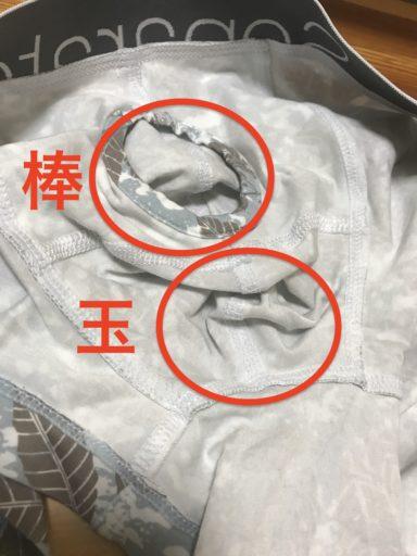 陰嚢分離型の下着の内部構造